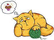 Kocour na dietě